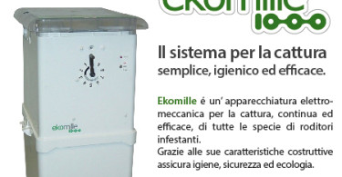 BANNER EKOMILLE - NEWSLETTER 450x450px_ITALIANO