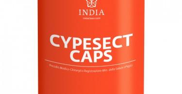 CYPESECT CAPS copia 2